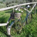 Το ποδήλατο περιμένει